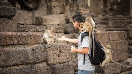 Singe grimpant sur un humain Phra Kan Shrine