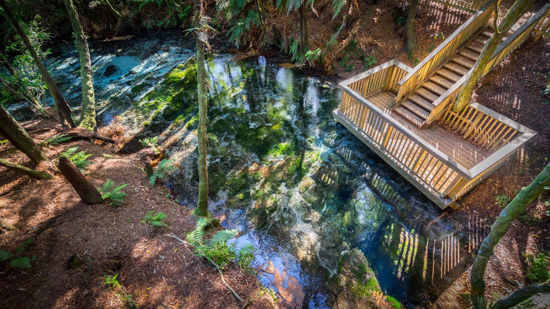 La source, Hamurana Springs, Rotorua