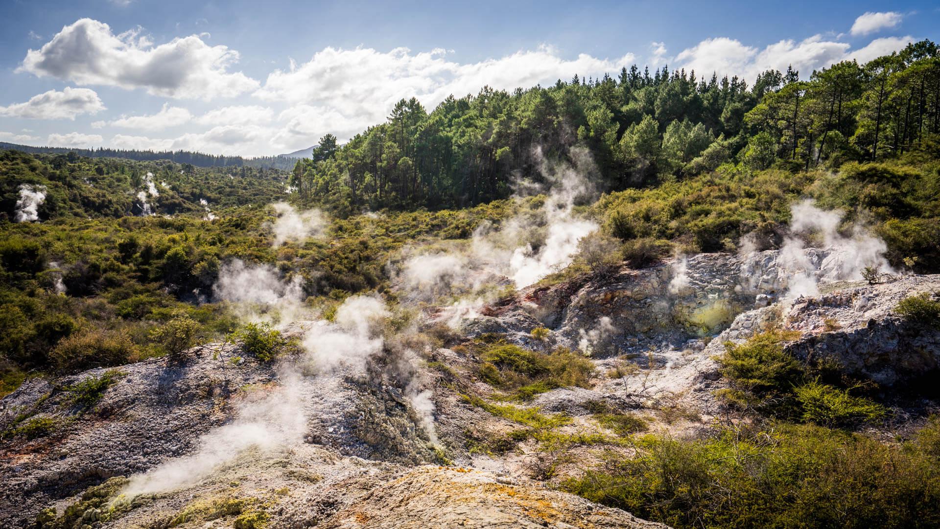 Fumerolles à Waiotapu Thermal Wonderlands