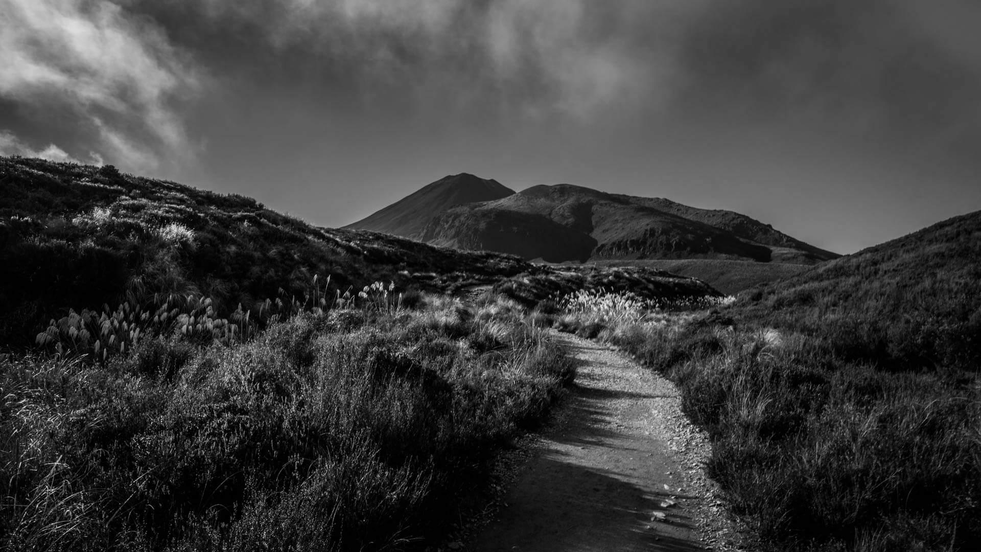Départ du Tongariro Alpine Crossing