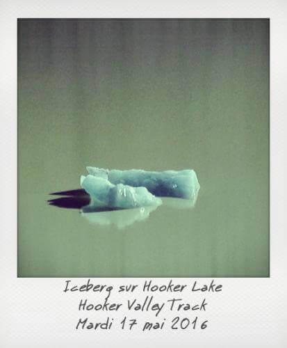 ICeberg sur le Hooker Lake