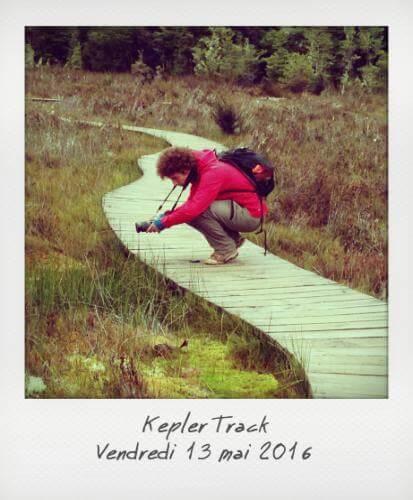 Kepler Track Alexis