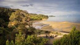 Crique, Abel Tasman