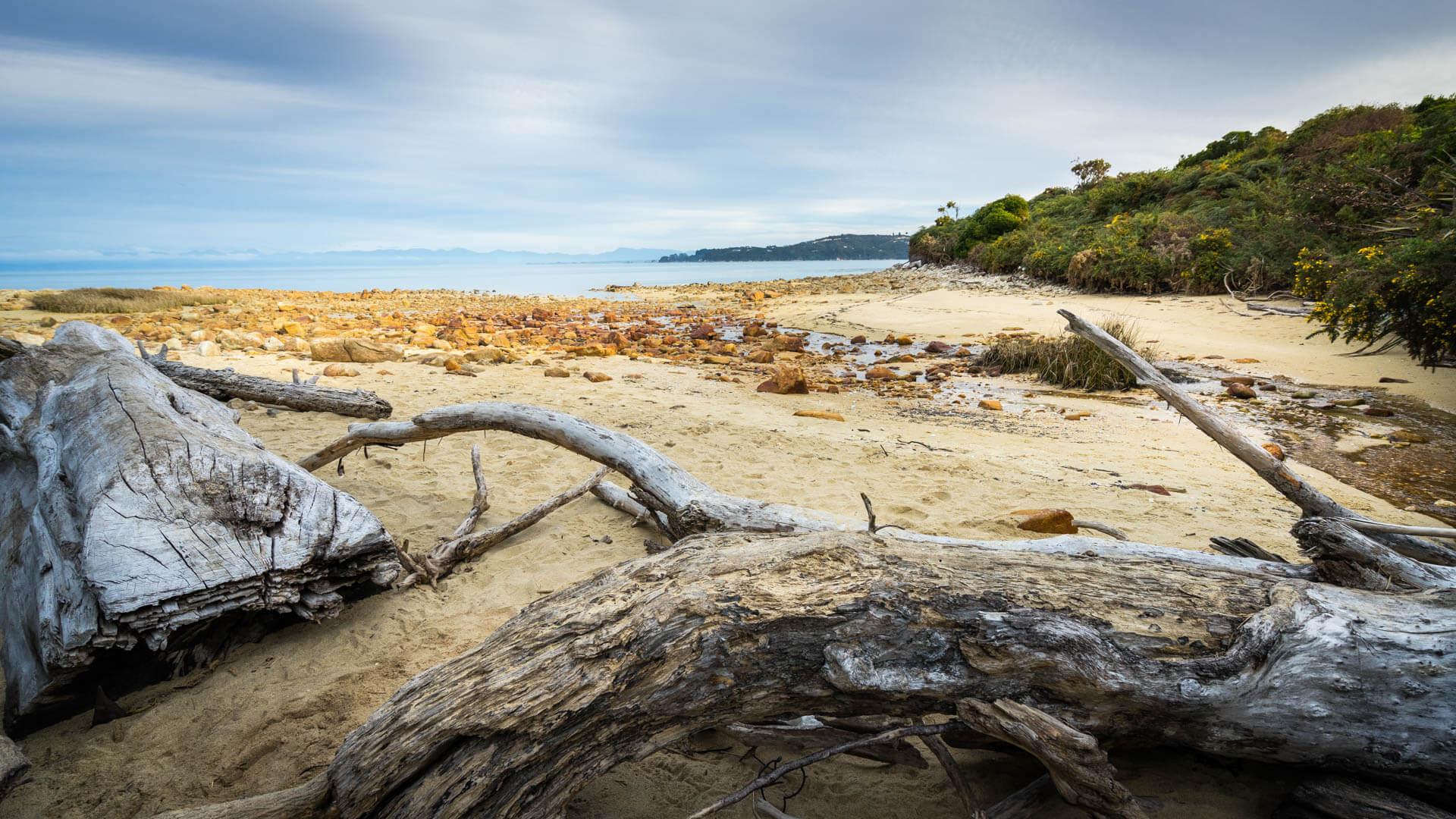Crique et bois, Abel Tasman