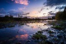 Vue au matin dans la campagne de Te Anau