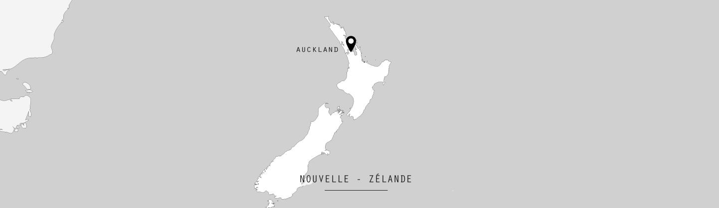 NZ-J1