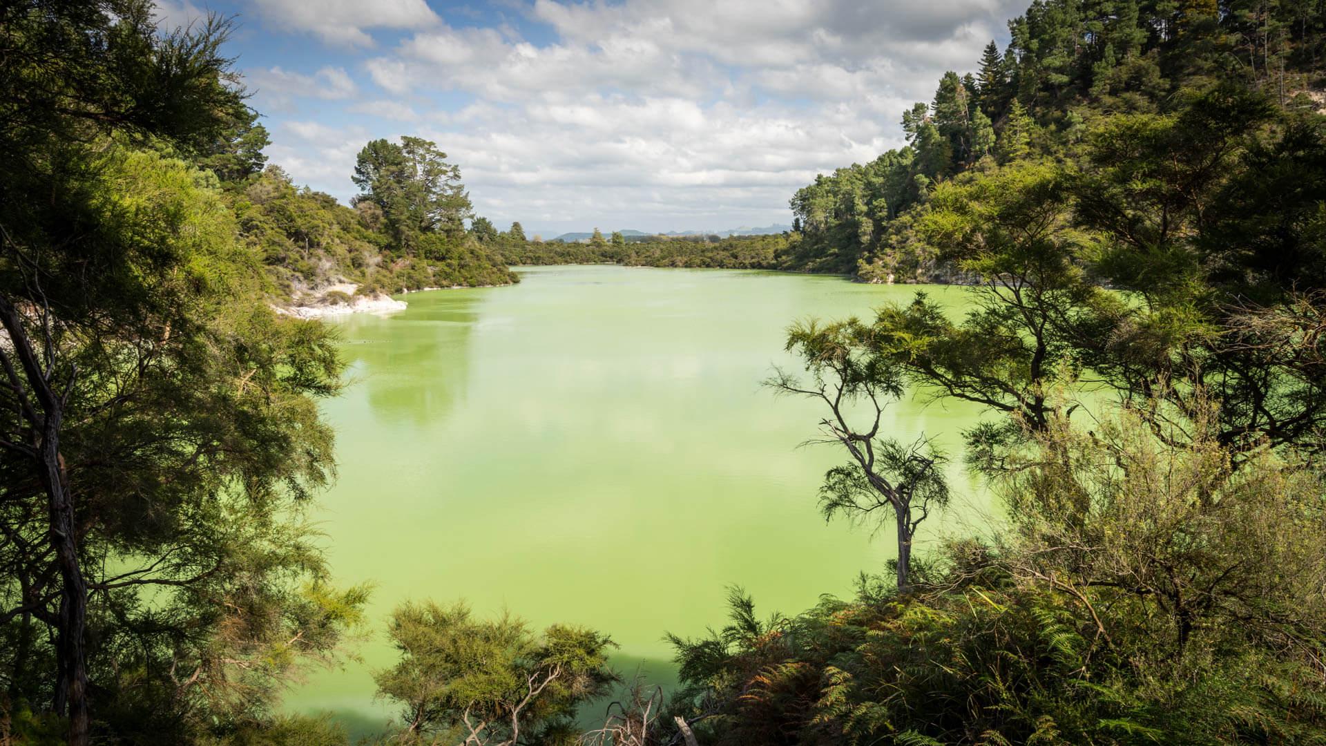 Lac vert, Waiotapu