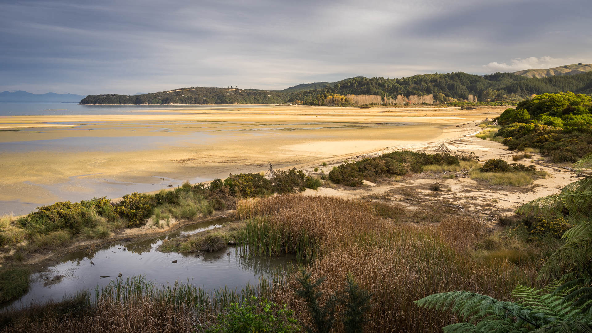 Plage et étang à Abel Tasman