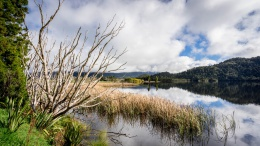 Lac en direction d'Arthur's Pass