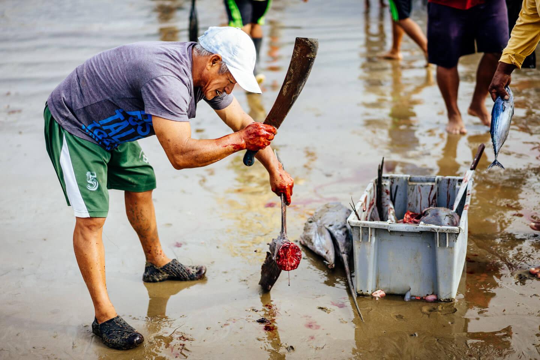 Marché aux poissons de Puerto Lopez